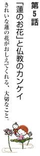 第5話 「蓮のお花」と仏教のカンケイ
