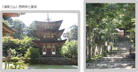 浅草仏教会「研修旅行」