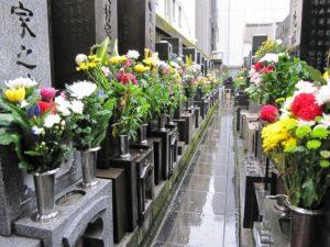 お花がいっぱいの墓地